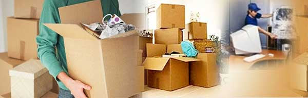 Movers in Houston and Dallas